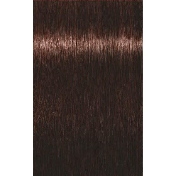 eda289d582 SCHWARZKOPF PROFESSIONAL IGORA ROYAL ABSOLUTES HAIR COLOR 4-05 Medium Brown  Natural Gold 60mL