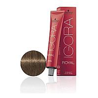 SCHWARZKOPF PROFESSIONAL IGORA ROYAL HAIR COLOR 7-00 Medium Blonde Natural Extra 60g