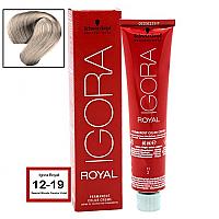 SCHWARZKOPF PROFESSIONAL IGORA ROYAL HAIR COLOR 12-19 Special Blonde Cendre Violet 60g