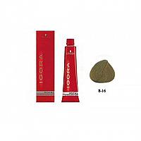 SCHWARZKOPF PROFESSIONAL IGORA ROYAL HAIR COLOR 8-16 Light Blonde Cendre Auburn 60mL