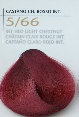 5/66 Int Red Light Chestnut