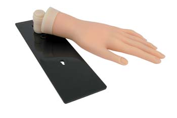 PP4021AB Hawley Practice Training Hand (soft) on Stand