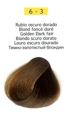 6-3 Golden Dark Blonde