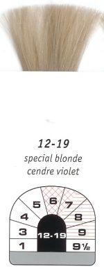 12-19-Special Blonde Cendre Violet-Igora Royal 60g
