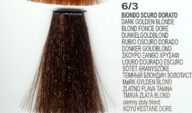 6/3 Dark Golden Blonde (LK Creamcolor 100g)