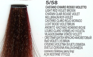 5/58 Light Red Violet Brown (LK Creamcolor 100g)