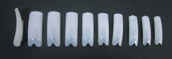 6006-Hawley V-Cut Nail Tips 500/Tray