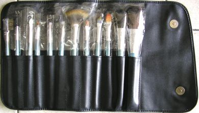 12 Pc Professional Cosmetic Brish Set in Vinyl Wrap Case