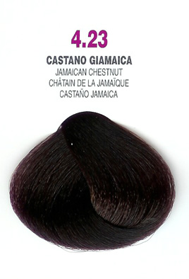 COLORIANNE Hair Colour- 100g tube-Jamaican Chestnut-#4.23