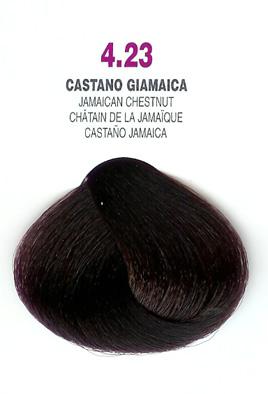 COLORIANNE Hair Colour- 100g tube-Jamaican Chestnut-#4.23