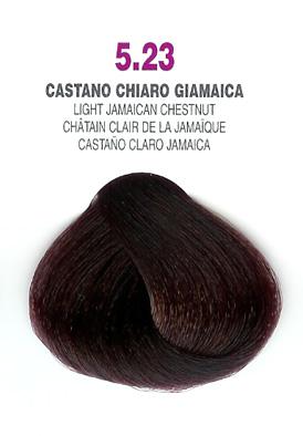 COLORIANNE Hair Colour- 100g tube-Light Jamaican Chestnut-#5.23